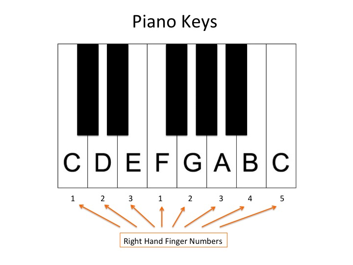 Paino-Keys-Pic